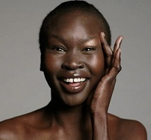 Alek Wek Wiki, Married, Husband, Boyfriend, Pregnant, Baby, Net Worth